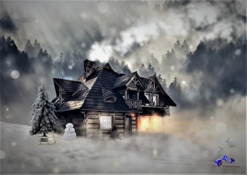 High quality art print - House in winter