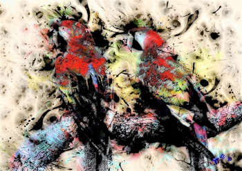 High quality art print - Parrots
