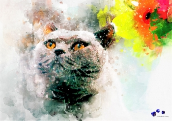 High quality art print - Cat
