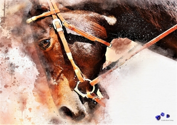 High quality art print - Horse