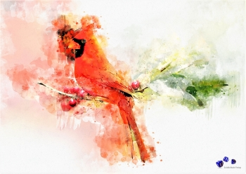 High quality art print - Red bird