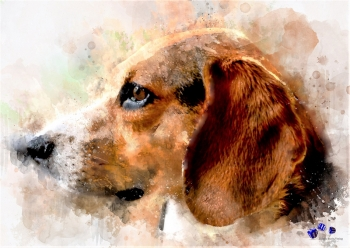 High quality art print - Dog